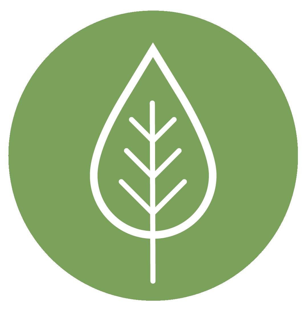 icono medio ambiente (2)